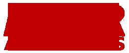 Ricambi Auto Torino – Amber Auto Parts Logo